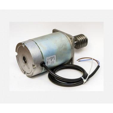 CAME 119RIG047 Электродвигатель GARD24